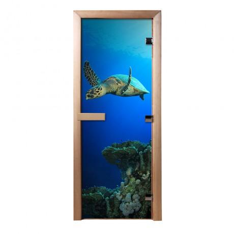 Дверь из стекла с фотопечатью Черепаха
