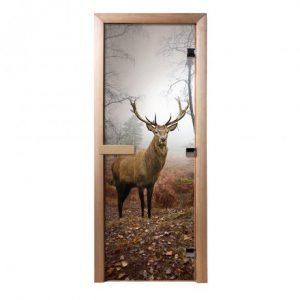 Дверь из стекла с фотопечатью Олень